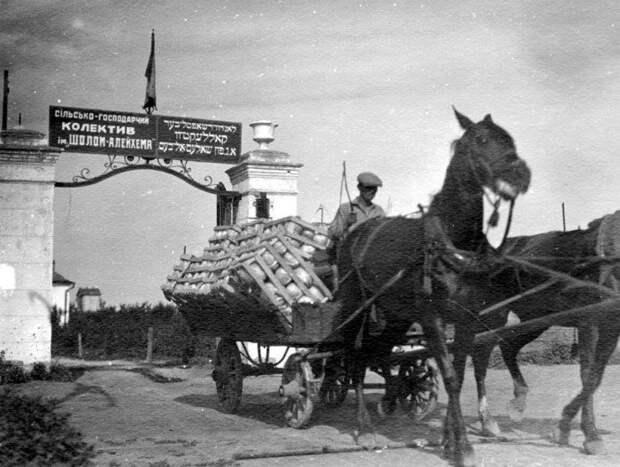 «Крымская Калифорния»: как американцы пытались отделить Крым от СССР