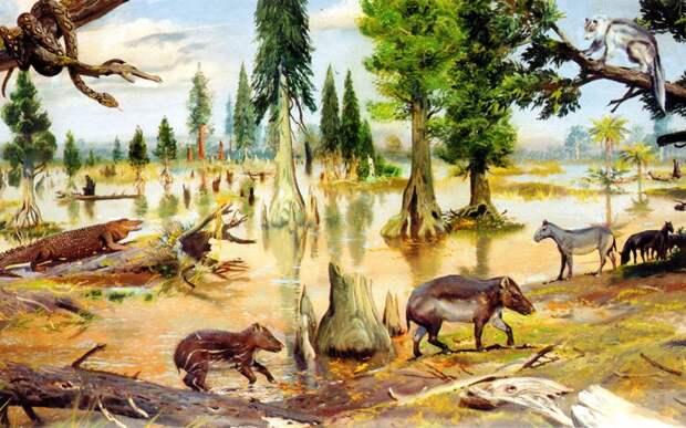 Глобальное потепление вернет нашу планету на 35 миллионов лет назад