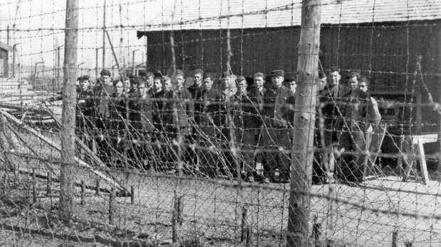 Почему Норвегия тайно выкопала останки тысяч советских солдат