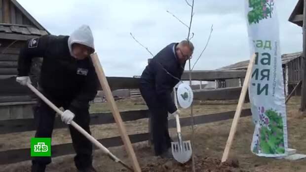 Посвященный подольским курсантам «Сад памяти» появился под Калугой