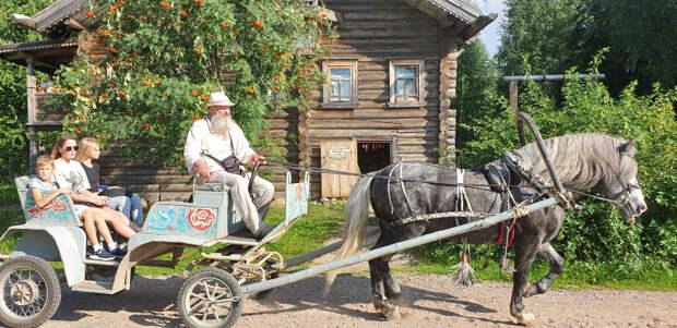 Катание на повозке в деревне Верхние Мандроги