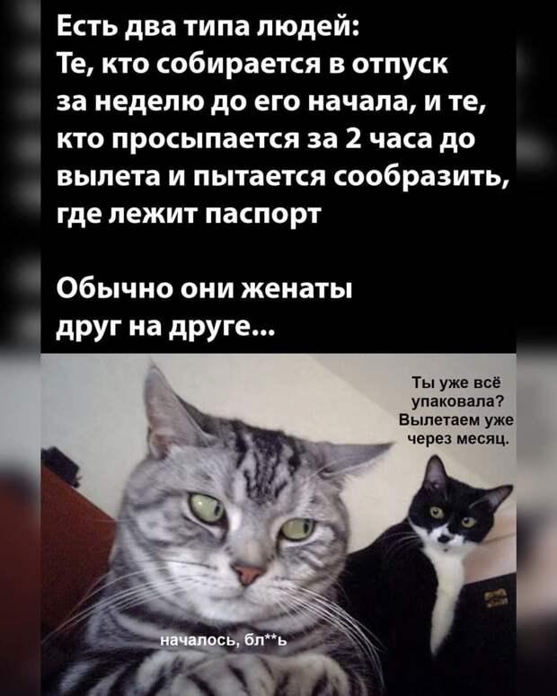 Лежит постаревшая пара в супружеской постели:  – Дорогой, а ты мне изменял?...