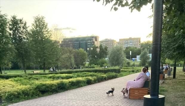 В парке «Ростокинский акведук» навели порядок после жалобы жителей