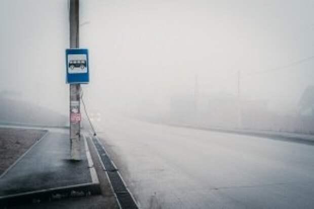 На Московском проспекте появилась новая остановка общественного транспорта