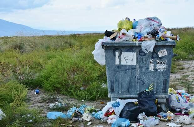 Роспотребнадзор прояснил ситуацию с запретом пластиковых пакетов