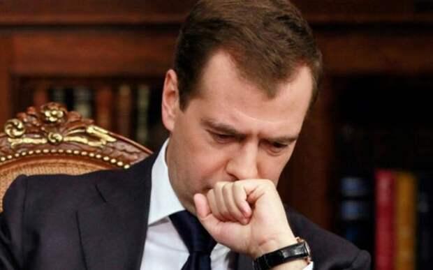 Депутаты выступили против коррупции Медведева и предложили его посадить