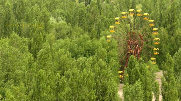 chnpp18 Оживающий Чернобыль