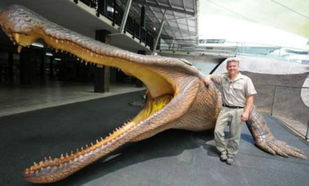 Крокодил побил рекорды размеров: 12 метров в длину