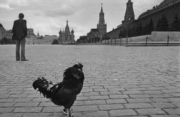 10 повседневных снимков советской Москвы, которые передают атмосферу тех времен