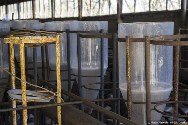 Секретная лаборатория в Чернобыле.