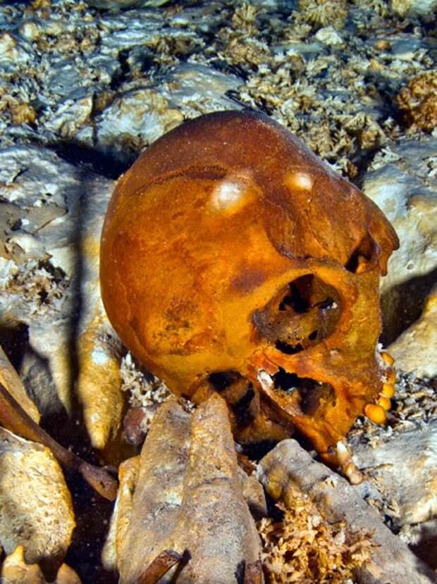 Ученым впервые удалось найти ДНК первых индейцев и подтвердить их родство с чукчами.