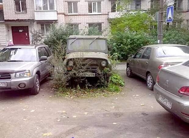 19доказательств того, что где-то существуют курсы альтернативной парковки. Иначе откуда эти люди?