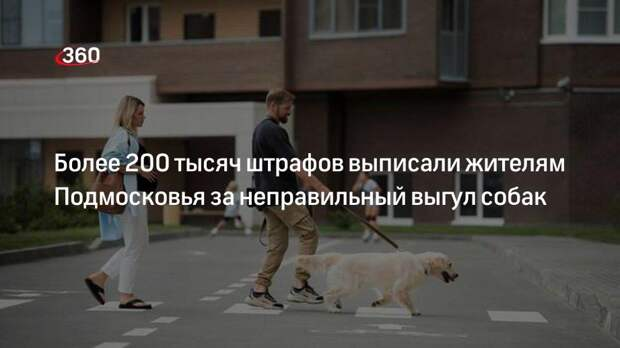Более 200 тысяч штрафов выписали жителям Подмосковья за неправильный выгул собак