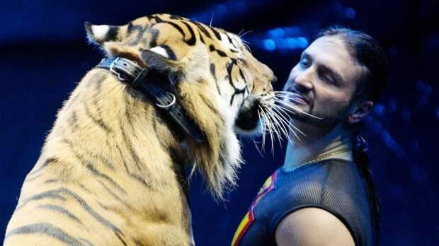 «Без проблем могу засунуть голову впасть льва». А. Емельяненко снял шутливое обращение кбратьям Запашным: видео