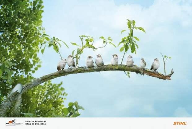 Stihl Chainsaw: Birds, Stihl, Publicis Conseil, Paris, Andreas Stihl AG, Печатная реклама