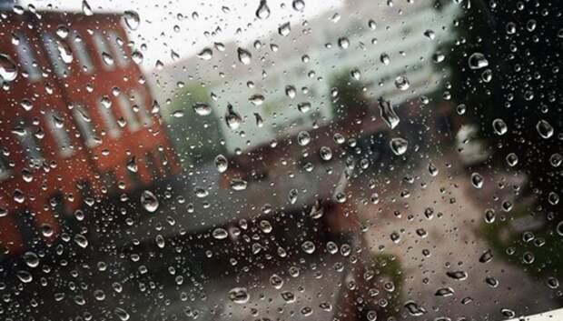 Дожди ожидают жителей Московского региона на текущей неделе
