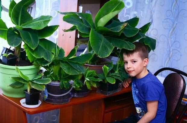 Тропический рай Александра Приданова