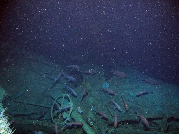 Как робосубмарина обнаружила подлодку, загадочно пропавшую 103 года назад