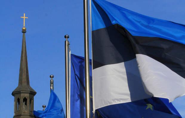 «Тревожные сигналы»: В Эстонии заявили о «временном параличе» НАТО