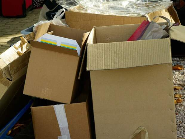 «Гринпис» призвал власти РФ отказаться от биоразлагаемой упаковки
