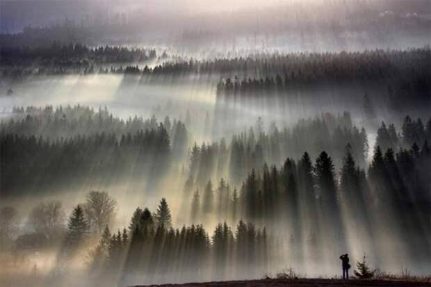 Призрачно все: завораживающие фото для тех, кто любит осень