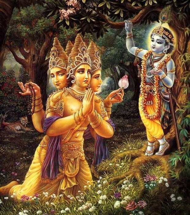 В ИНДИИ РОДИЛСЯ РЕБЕНОК С ОСТАТКАМИ БЛИЗНЕЦА НА ЖИВОТЕ
