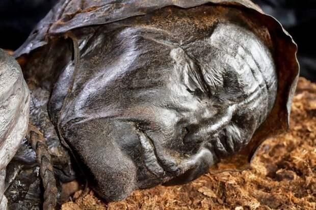 Человек из Толлунда История, Интересное, Длиннопост, Познавательно, Баян, Фотография