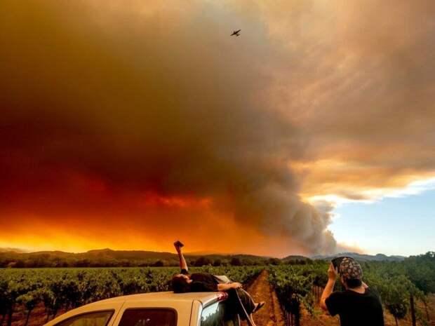 В США пожары бушуют в нескольких штатах, дым добрался до Канады