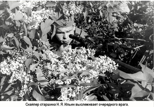 Советские снайперы Великой Отечественной войны, ч.9