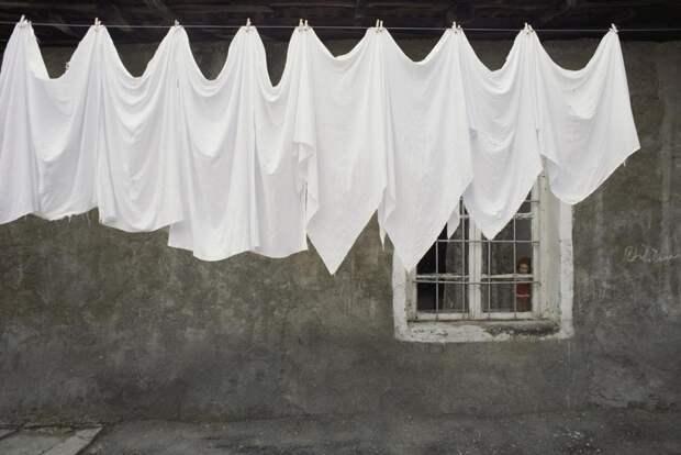 Интересные и необычные фото «жизнь в цвете» от National Georgaphic. Белый.