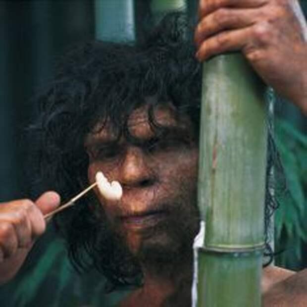 Древние люди пили и принимали наркотики