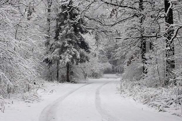 31 января в Удмуртии ожидается до -6 градусов