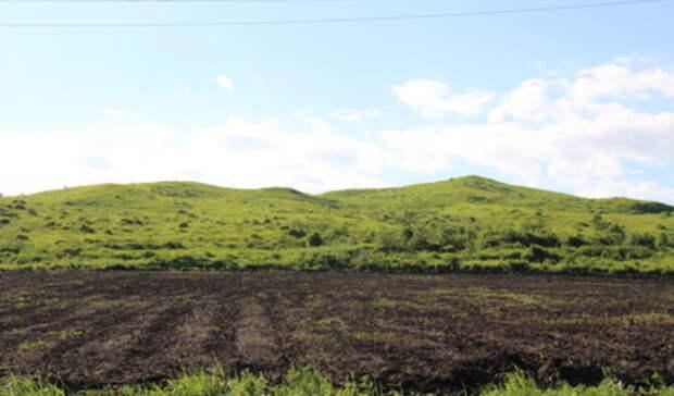 Опасное загрязнение почвы обнаружено втрех свердловских городах