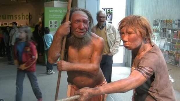 Влияние окружающей среды запустило эволюцию толерантности еще в древние века