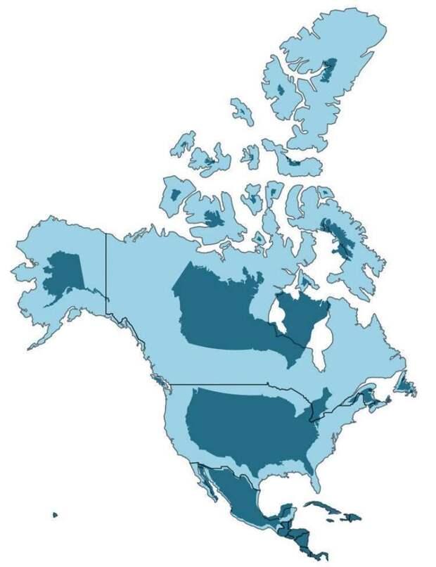 На наших картах размеры стран неправильные! Вот истинное положение вещей!