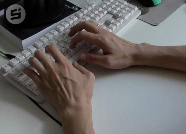 Компании Удмуртии получили двухнедельный доступ в систему «СПАРК»