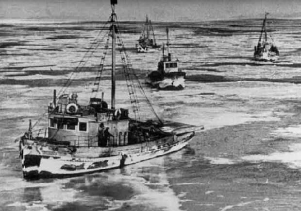 19 января 1965 года: самый черный день рыболовного флота СССР