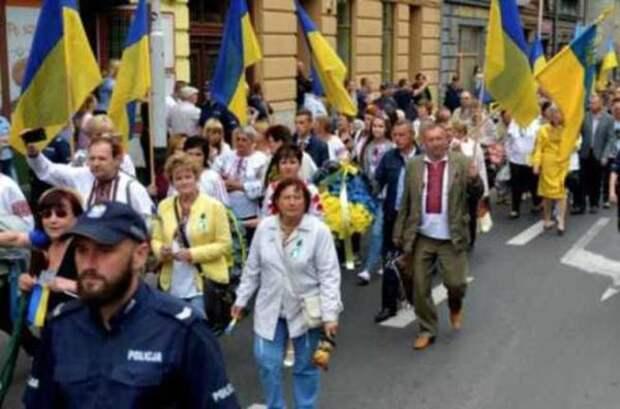 Заигравшись, Польша рискует создать на своей территории украинское «государство в государстве»