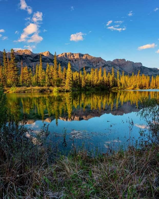 Наедине с природой: путешествия Марка Джинкса