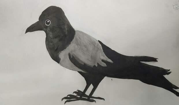 Рисунок вороны школьницы из Нижнего Тагила выставят в Третьяковской галерее в Москве