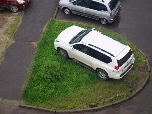 Газон? Что такое газон? В моем дворе любое место парковочное, никаких газонов автомир, олени. идиоты, странные люди, хозяева, я паркуюсь как