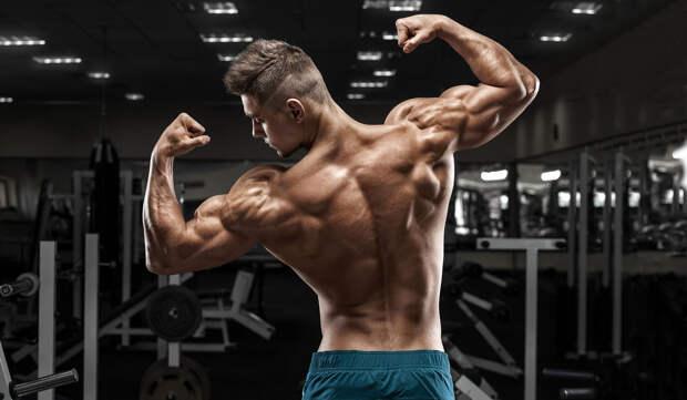 Плечи —как правильно качать? Совмещать в один день с ногами или со спиной?