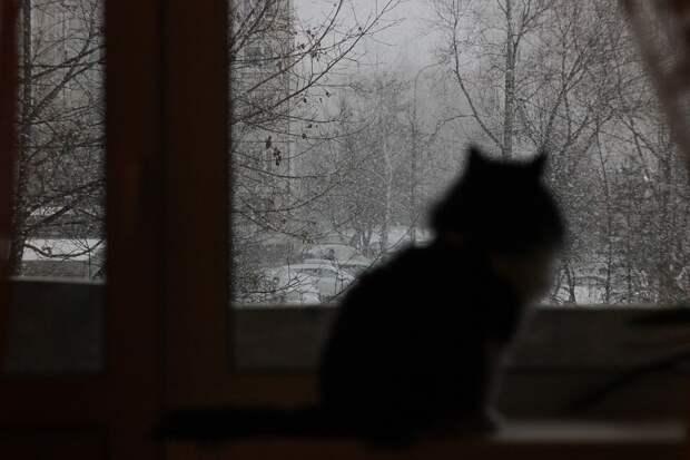 Россиян предупредили о заморозках и пыльных бурях