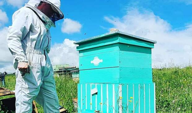 Специалистов по пчеловодству начнут готовить в Удмуртии