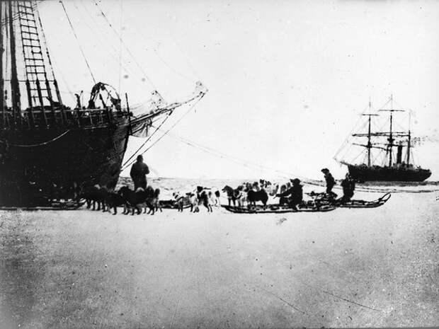 Судно снабжения экспедиции Руаля Амундсена «Фрам» и барк «Терра Нова» возглавляемая Робертом Скоттом в Китовой бухте, февраль 1911 года (Wikimedia)