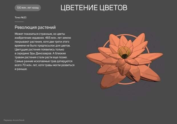 istoriya_zemli_20