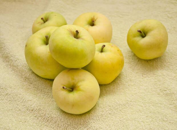 яблочный кисель польза