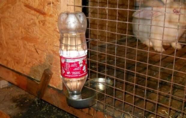 Простая, но эффективная идея, которая позволит не переживать за своих любимцев. /Фото: i.pinimg.com