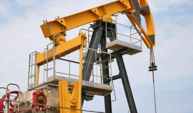 Более чем на6% увеличила добычу нефти «Роснефть»