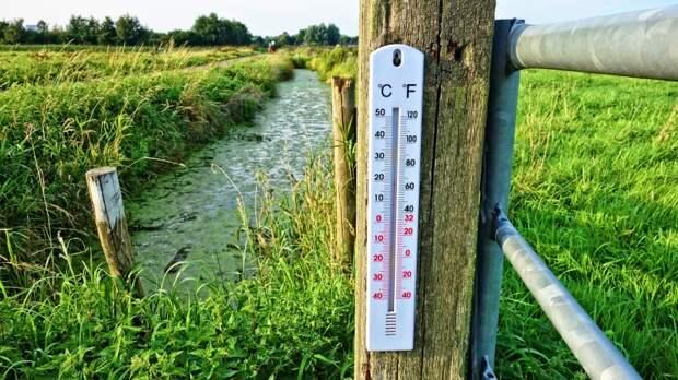 Народные методы охлаждения в жару могут привести к болезням почек